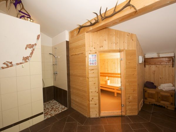 Chalet appartement good times saalbach 4 6 pers saalbach - Mezzanine accommodatie ...